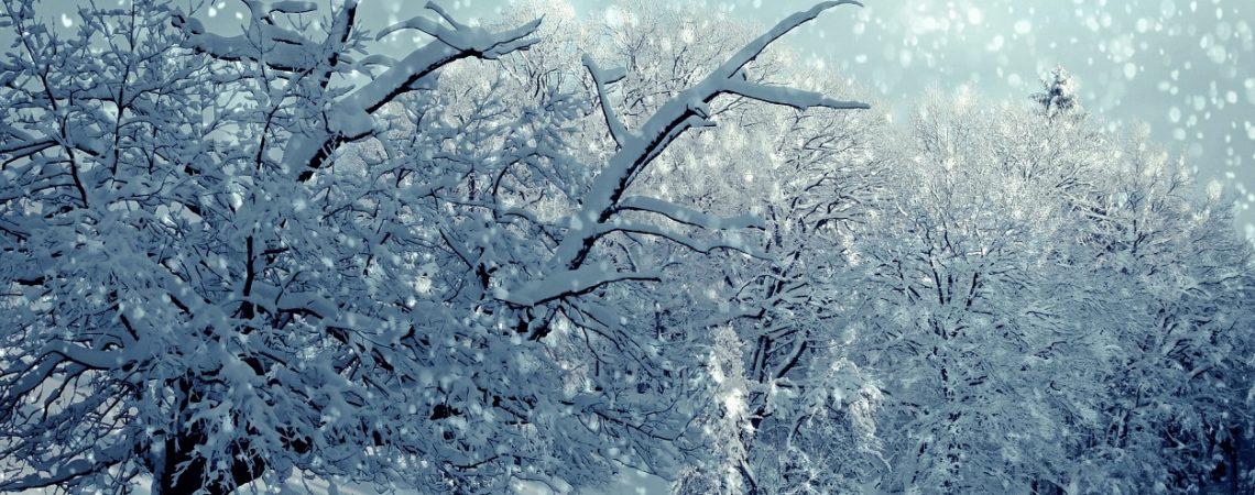 Winterangebot vom 1.12.16 – 1.3.17